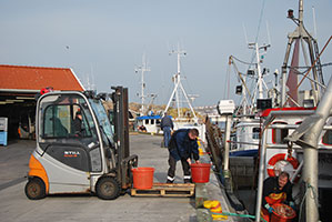 Färsk fisk till Göstas fiskbutik på Smögen
