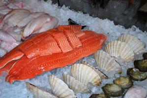 Färsk fisk i kyldisken i Göstas Fiskbutik